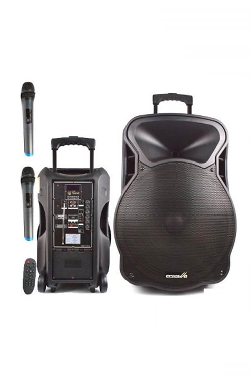 Osawa Osw-9135 Taşınabilir Portatif Seyyar Ses Sistemi 150 Watt 38 cm