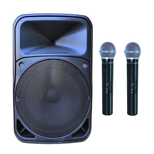 Gold Audio Pro 5412EE Taşınabilir Ses Sistemi Çift EL Mikrofonlu