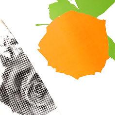 OrangeRose Layers Sm.jpg