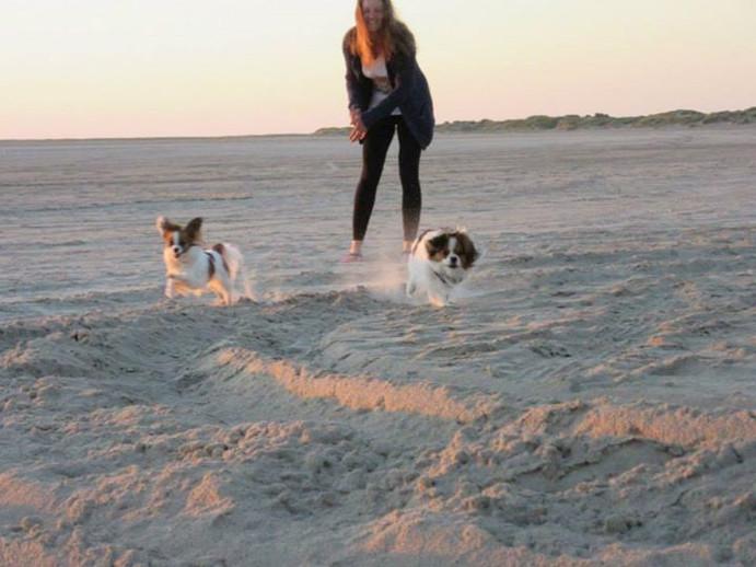 Spaß auch mit 2 Hunden