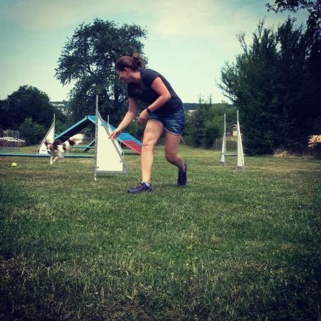 Agility, Spiel und Sport