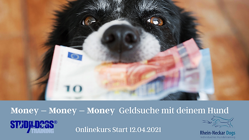 Kopie von Geldspürhund.png