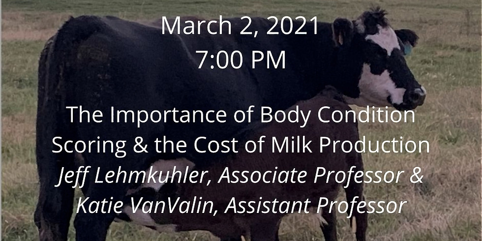 Beef Webinar Series: The Importance of Body Condition Scoring & the Cost of Milk Production