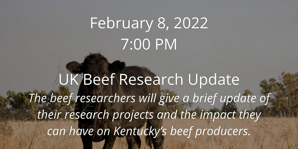 Beef Webinar Series: UK Beef Research Update