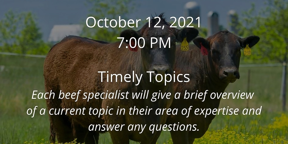 Beef Webinar Series: Timely Topics