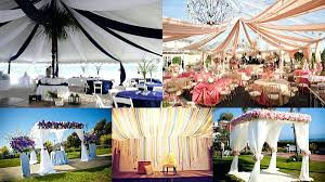 canopy 4.jpg