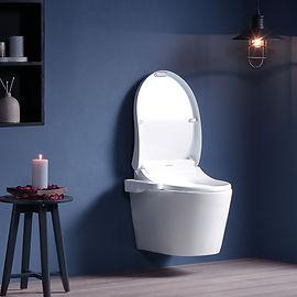 coway-bateri-bidet-in-toilet.jpg
