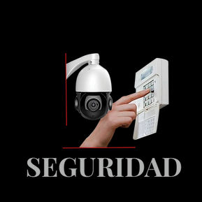categoria seguridad.jpg