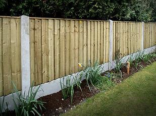 garden 5061 copy.jpg