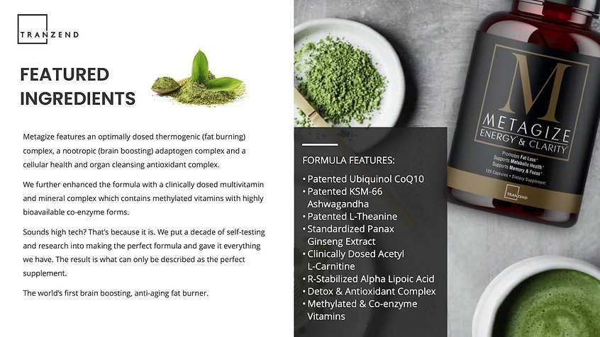 Metagize-Ingredients-Banner-Brochure-202