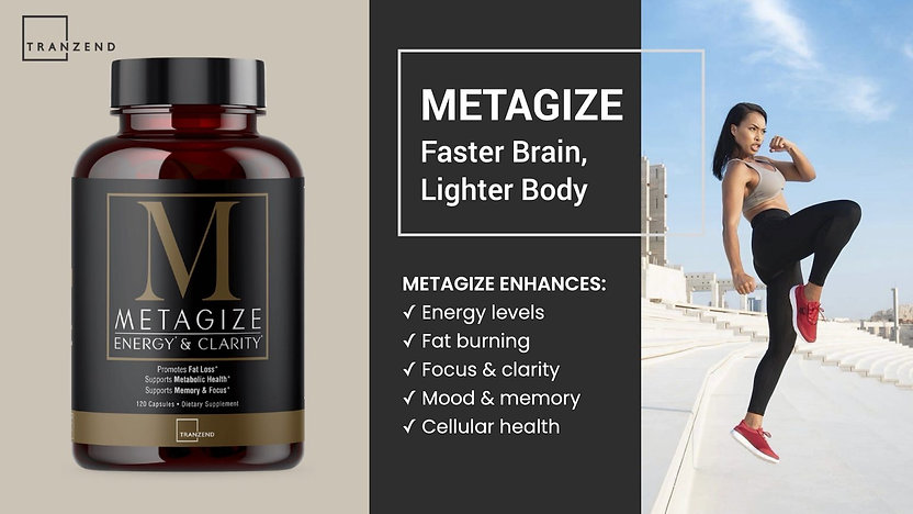 Metagize-Banner-Brochure-2020-Tranzend-1