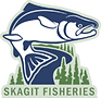 skagit fisheries.png