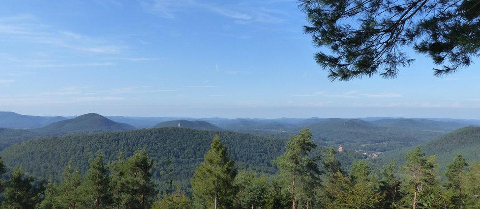 Blick über die Pfälzer Berge