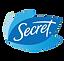 SecretLogoTransp.png