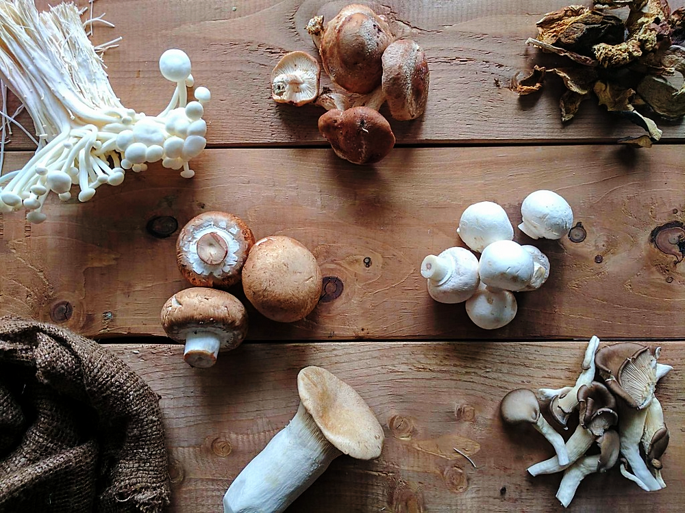 Mushroom 101 Your Guide on how to Select, Store, Clean and Choose the Right Mushroom for Your Dish