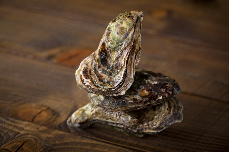 There are a number of varieties of oysters from the Atlantic, Pacific and Gulf