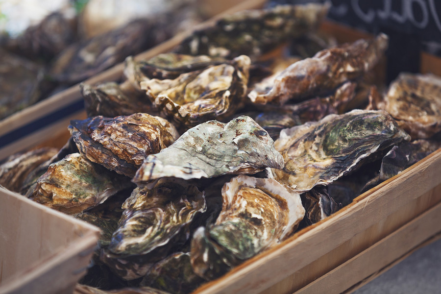 Shucking an oyster is a great skill for anyone who loves to entertain