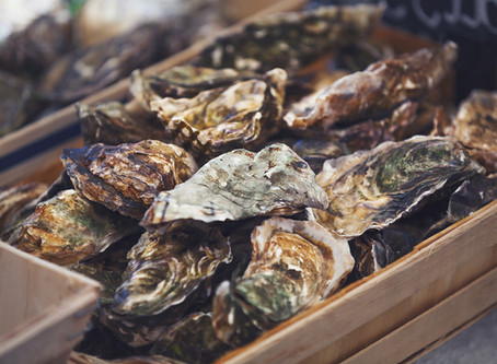Oysters 101: Your Ultimate Guide on How to Select, Store, Clean and Shuck Oysters So You Can Easily