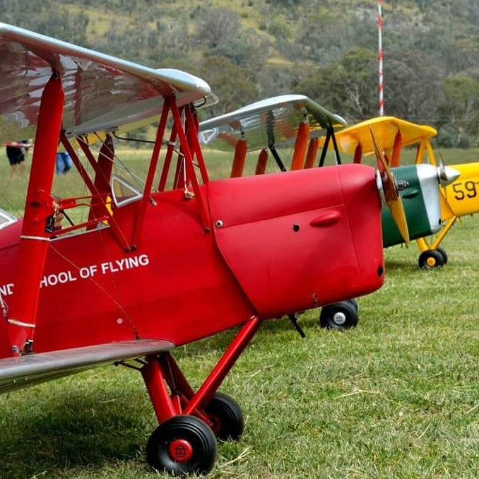 Piper Cubs and Wind in the Wires Fly In 16 April 2021