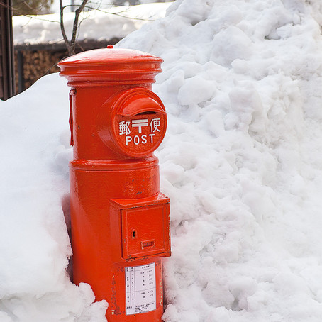 A Snowy Experience in Hokkaido