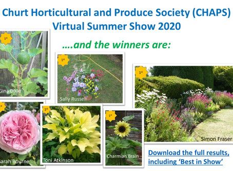 CHAPS Summer Show Results 2020