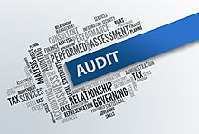 Audit Documents