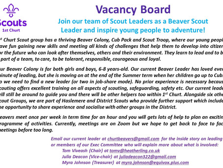 Beaver Leader Wanted for 1st Churt Scout Group