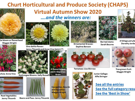 CHAPS Autumn Show Results