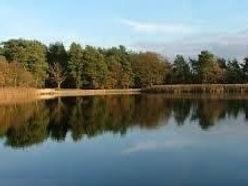 Walk 4 Little Pond