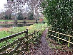 Walk 2  Plaster Hill