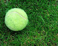 Churt Tennis