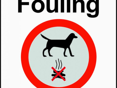 Clean up After Your Dog or a Fixed Penalty Notice….