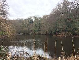Walk 1 Powers pond