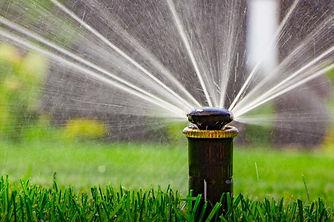 sprinkler-head.jpg