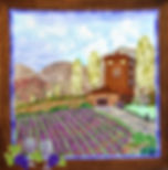 Landscape Pictures - The Vineyard.jpg