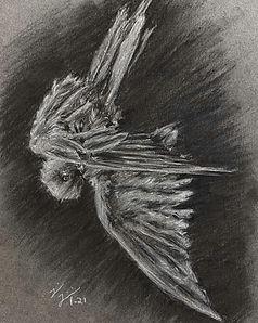 Icarus study.JPG