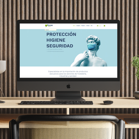Web Eivor Health