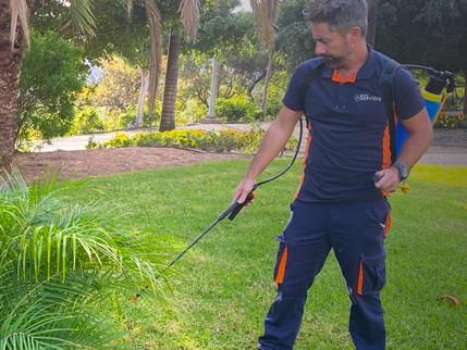 Tips para que tu jardín esté perfecto este 2021