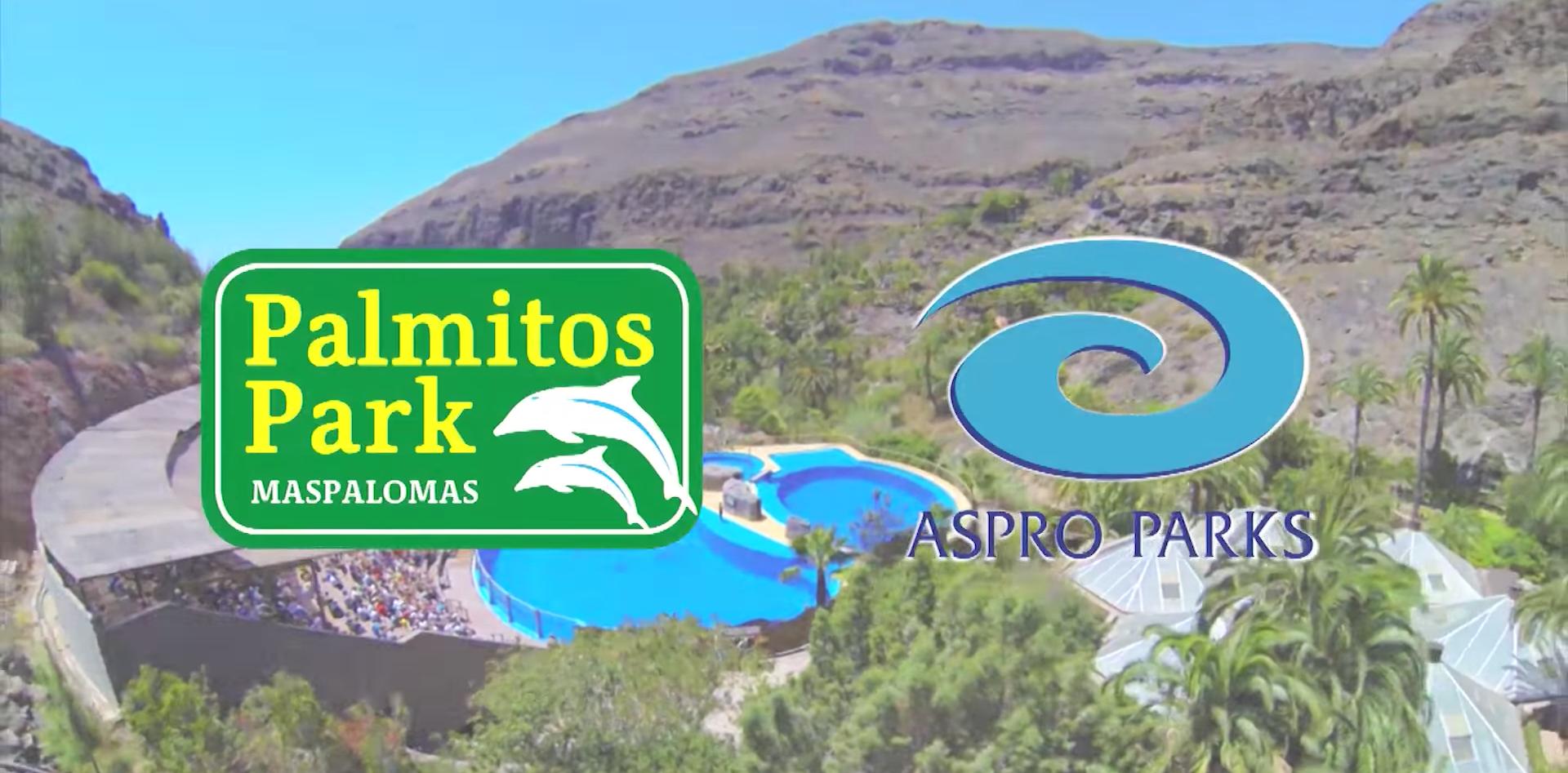 SPOT PALMITO PARK GLOBAL CANAL MIRA TV.p