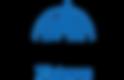 waltdisneypictures_logo.png