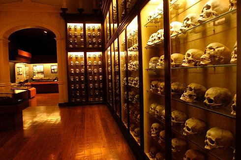 Museo_Canario.jpg