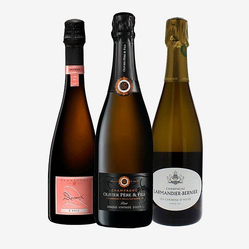 Wine Pack La Magia de Champagne