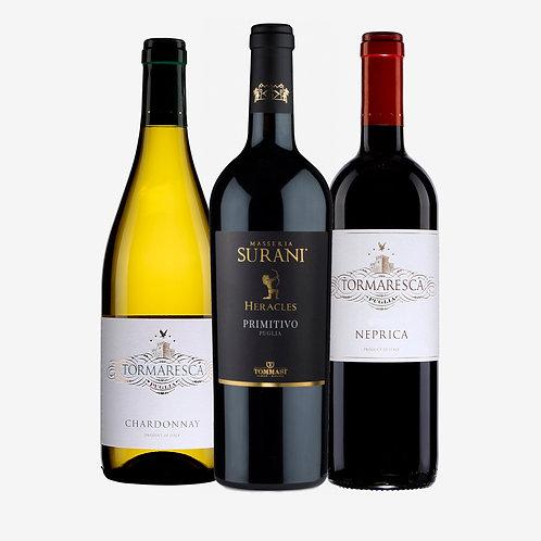 Wine Pack Puglia Tacón de Italia
