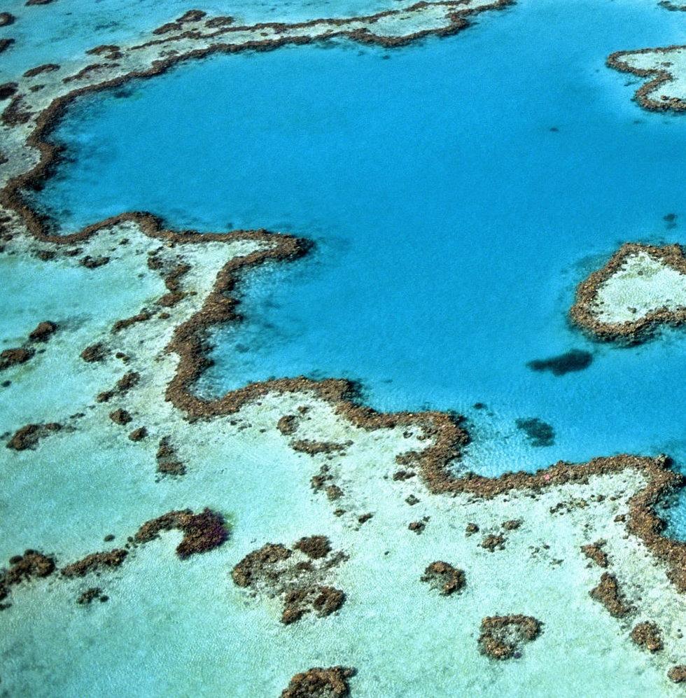 reefs-984352.jpg