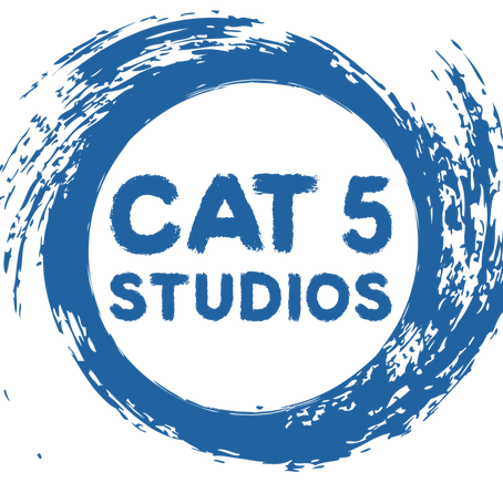 Cat 5 Studios Announces Partnership with AMS
