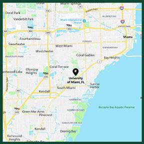 UM City Map - No Words.jpg