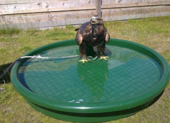 Straight sided Eagle Bath