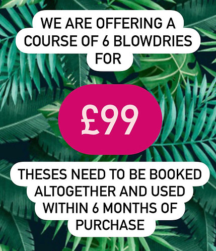 Course of 6 Blowdries in salon for only £99
