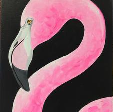 Flamingo Canvas