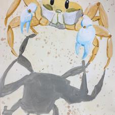 Shadow Dancing Beach Crab